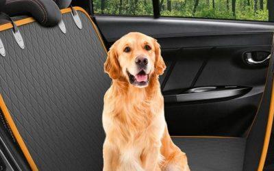 Las 10 Mejores Fundas de Coche para perros