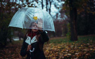Los 11 mejores paraguas transparentes y más vendidos