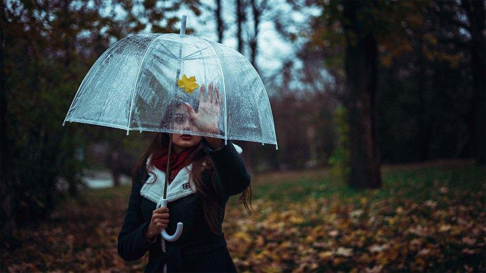 Top Mejores paraguas transparentes